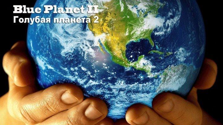 BBC Голубая планета 2 Документальный серии 1 2 3 4 2017 Великобритания 1080