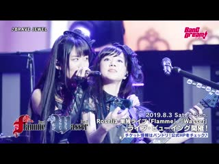 [battle live no girl no cry] roselia – brave jewel