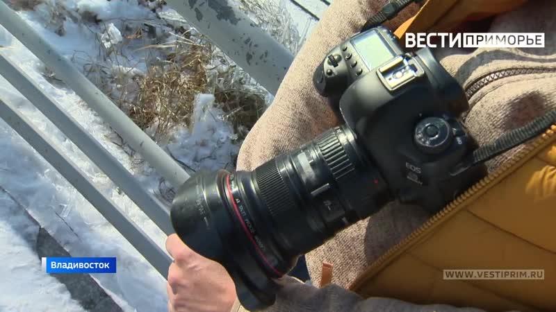 Фотограф из Владивостока рассказал как ему удалось снять видео с альпинистом на