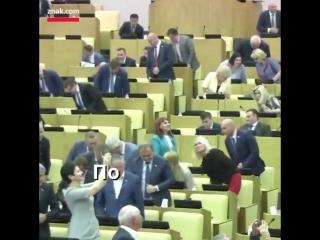 Госдума стоя аплодирует членам Конгресса США, принявшим санкции против России