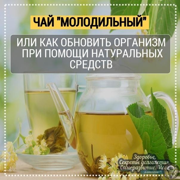 """Чай """"Молодильный"""", или как обновить свой организм при помощи натуральных средств"""