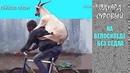 Эдуард СуровыйНа велосипеде без седла