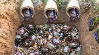 Top 5  video 2017 Amazing Man Make 5 Fish Trap  Crab Trap & Eel Trap in Cambodia