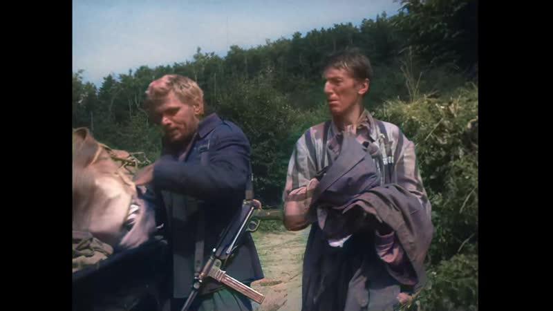 Жаворонок в HD СССР 1965 Цветная версия фильма машинная колоризация