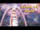 Aion 5.3 Arena of Gold - Highlights