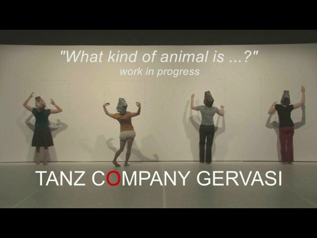 Tanz Company Gervasi What kind of animal is