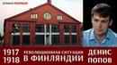 Денис Попов. Революционная ситуация в Финляндии в 1917-1918 гг.