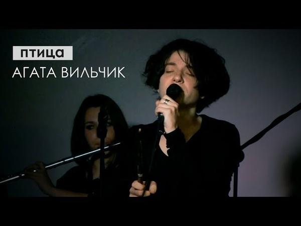 Агата Вильчик - птица (Malevich art-club, Харьков, 21.10.18)