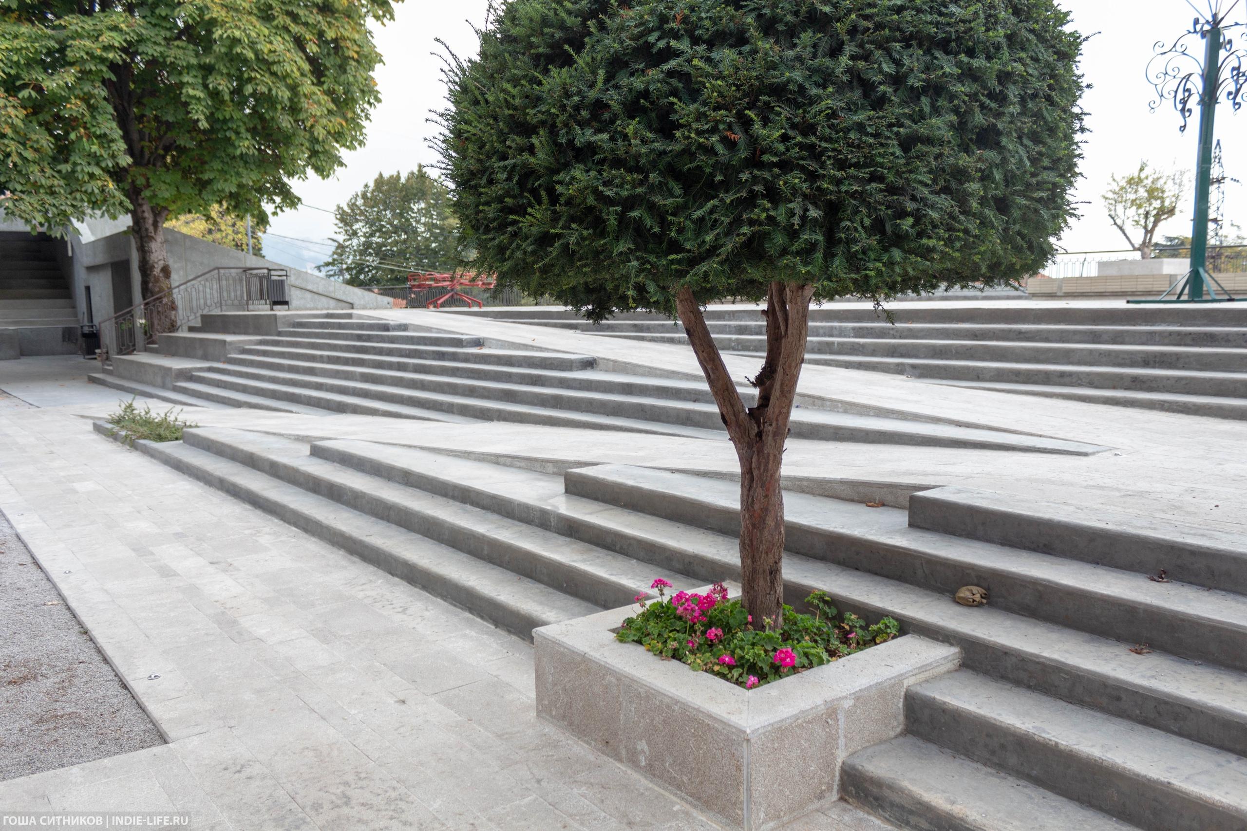 Зеленые насаждения в общественном пространстве