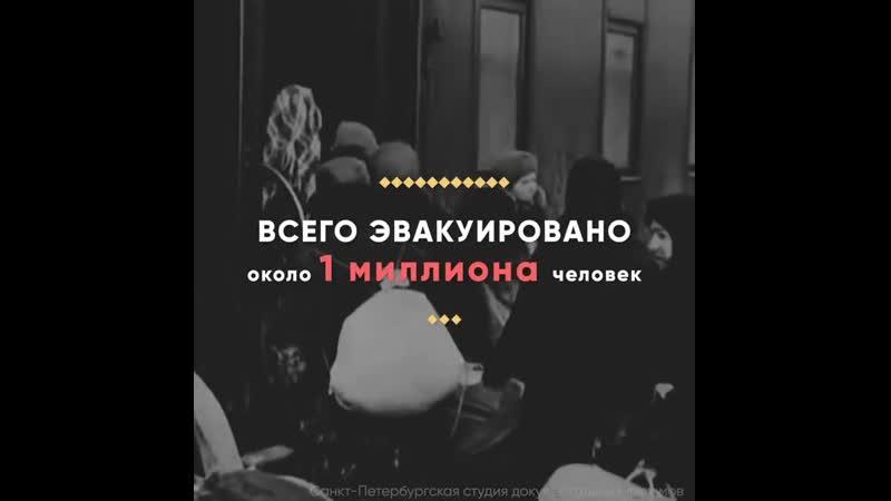 Блокада Ленинграда в цифрах Ужасающая статистика из блокадного Ленинграда
