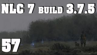 NLC 7 build  ч.57 Сдаём задания на Янтаре, дальше по ситуации.