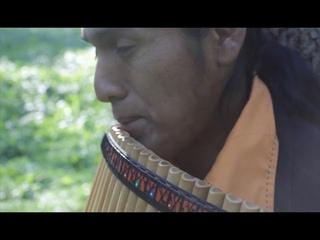 Выйду ночью в поле с конем - Луис Марселло (Перуанская флейта)