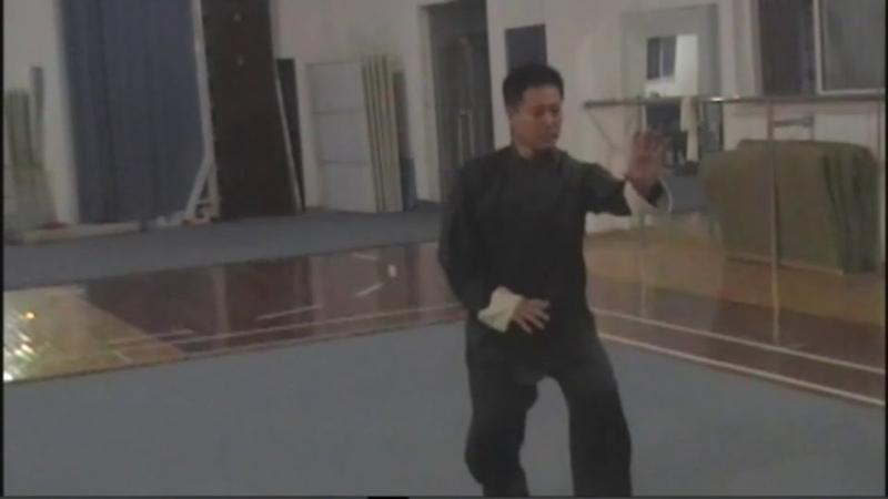 Синъицюань мастер Лу Фуцзюнь ушу Xingyiquan master Lu Fujun wushu