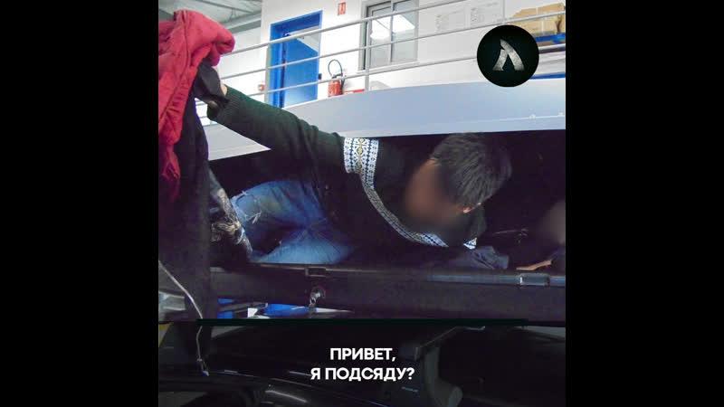 Британец нашёл в своей машине чернокожего мигранта АКУЛА