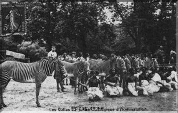 В конце 19 начале 20 века в Европе были очень популярны человеческие зоопарки Человеческий зоопарк (также известный под названием «этнологическая экспозиция», «выставка людей» и «негритянская