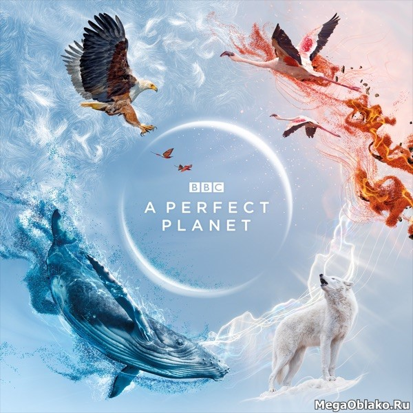 BBC: Идеальная планета / A Perfect Planet [S01] (2021) UHD BDRip-HEVC 2160p | HDR | Кириллица, FocusX, AMS, TVShows
