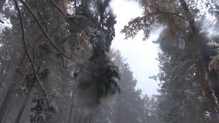 Рома Жуков - Первый снег