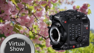 Nature, Unlocked - Canon C300 Mark III Footage (Pre-Production)
