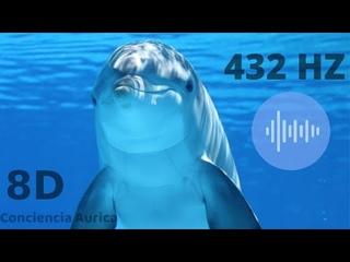 El Canto de los Delfines en 8D. Sube tu frecuencia!  (Dolphin Singing, Healing 8D)
