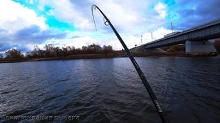 ТАМ ТРОФЕЙ! ОСЕННИЙ ЖОР ЩУКИ! Рыбалка на спиннинг в ноябре! Ловля щуки осенью! Часть 2