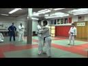 Hane Goshi (Mr. Shin's Tournament Technique)