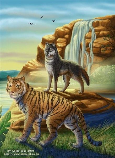 картинки тигров с совами традиции украшать окна