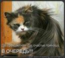 Фотоальбом Ирины Ткачик