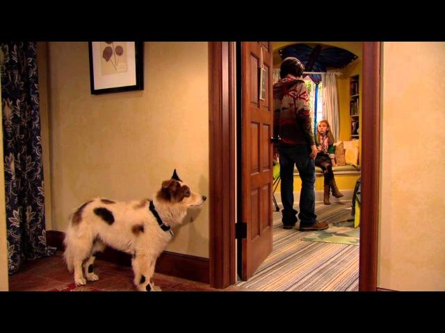 Сериал Disney - Собака точка ком (Сезон 1 Серия 1)