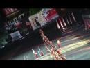 Бельгийские ходулисты 2015-09-05