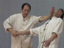 Tai Chi Chin Na YMAA Qin Na Dr Yang Jwing Ming Taijiquan joint locks