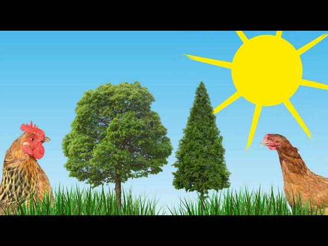 ЗВУКИ ЖИВОТНЫХ. Как говорят животные. Развивающий мультфильм для детей.