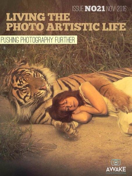 Living photo life 112016