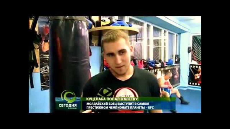 Ion Cutelaba в UFC