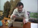 Разведение червя Старатель . Изготовление биогумуса.