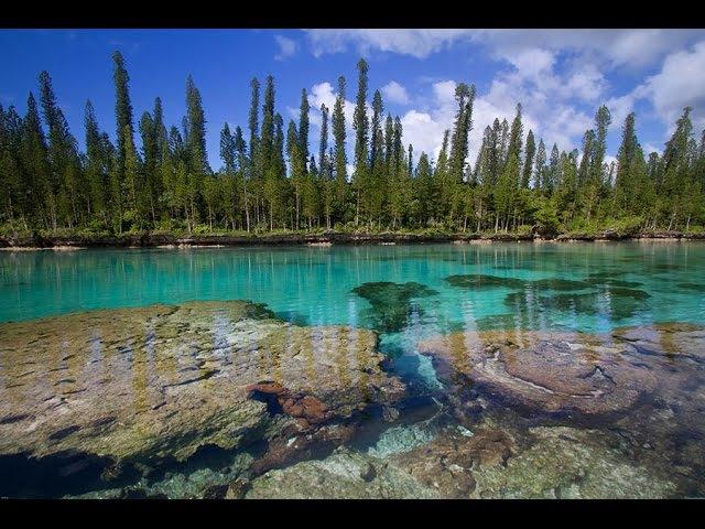 Хранители природы Новая Каледония National Geographic