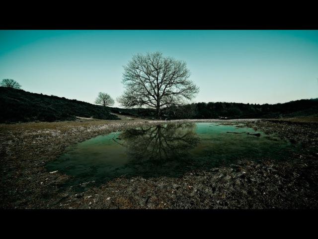 Pentak Stream. Gothic II Night of the Raven Возвращение 2.0 (The Returning 2.0) Часть 34