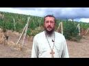 Как вернуть любовь мужа и спасти семью. Священник Игорь Сильченков.