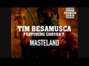 Tim Besamusca Featuring Chrysa T Wasteland Radical Project Remix