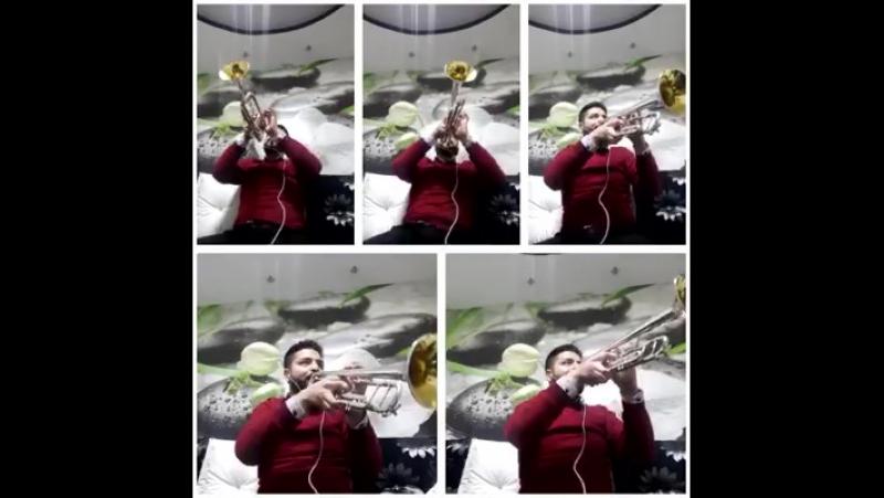 Bijav Music Humor Cambo Agusev
