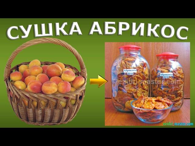Сушка абрикос – 10 кг. Как сделать курагу в домашних условиях