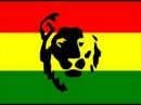 Born Jamericans Ft. Mad Lion - Gotta Get Mine
