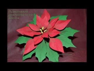 Волшебный цветок Пуансетия из Фоамирана  от Ольги Сыротюк