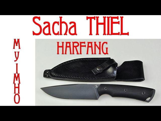 Sacha THIEL HARFANG My IMHO