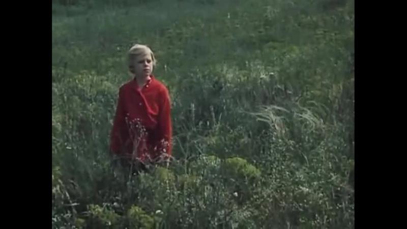 Ковыль из фильма Степь 1977 года