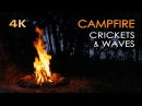 Campfire by the Sea - Crickets Ocean Waves - Night Forest Nature Sounds - Relaxing Fireplace