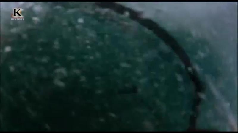 Акульи пастухи 1 сезон 8 серия