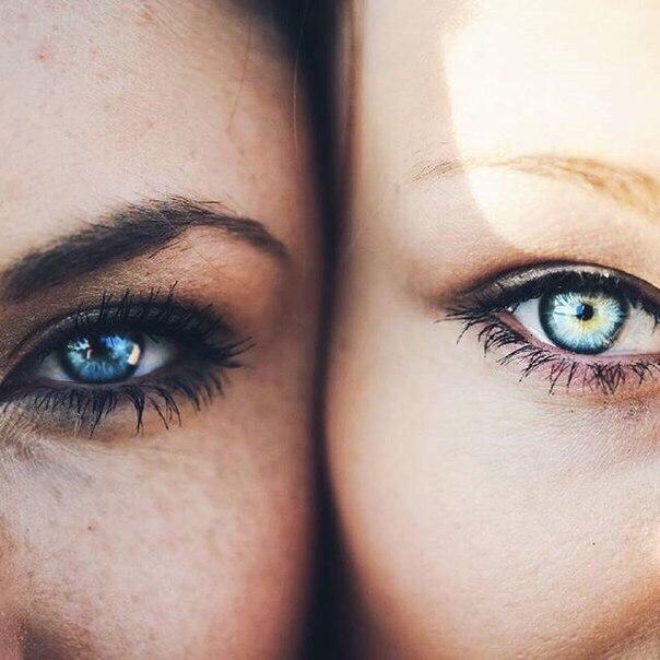 легендарной актрисы глаза в которых можно утонуть фото штатив макросъемке