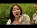 Maboul de Seoul Reportage Corée du sud