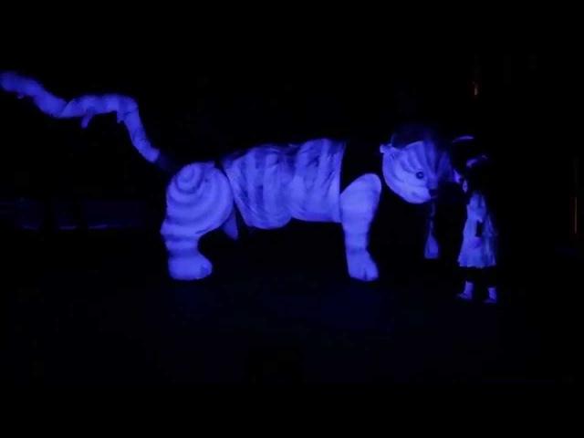 Театр ARTist Алиса в стране чудес отрывок Electro Light Fest