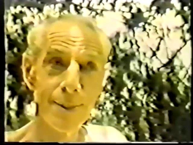 Сатпрем Более позднее интервью